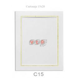 C15/1015