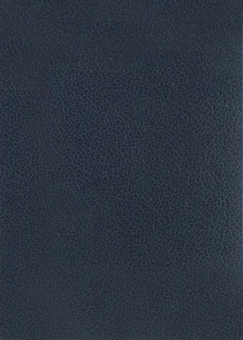 Azul oscuro liso