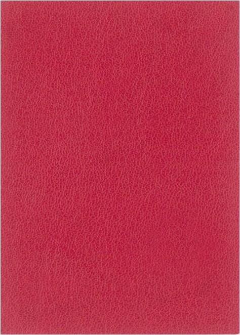 Rojo liso